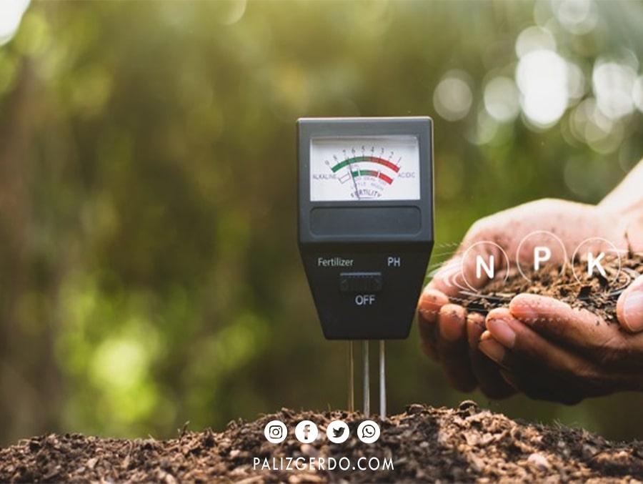 بهترین خاک برای احداث باغ گردو