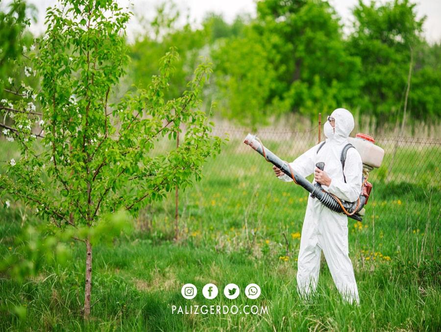 لباس مخصوص سمپاشی درختان گردو
